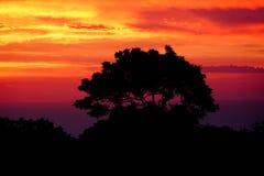 Карибский заход солнца над Sosua Стоковые Изображения
