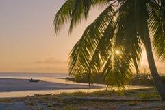 карибский заход солнца Стоковые Фото