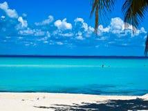 Карибский пляж. Мексика Стоковые Изображения RF