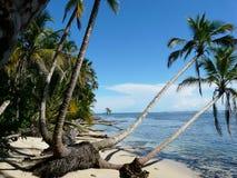 Карибский пляж Стоковое Изображение