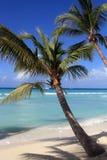 Карибский пляж Стоковое фото RF
