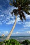 Карибский пляж Стоковые Изображения RF