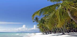 Карибское лето стоковая фотография rf
