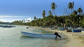 Карибское лето стоковое фото