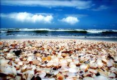карибское море Стоковое фото RF