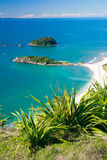 карибское ощупывание Стоковое Фото