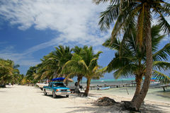 карибско Стоковое Фото
