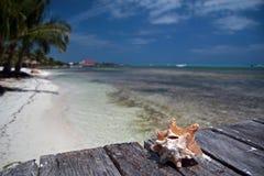 карибско Стоковые Фото