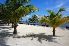 карибско Стоковое Изображение