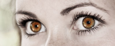 Карий глаз - красивейший, женственно стоковые фото