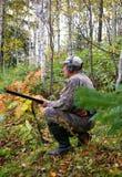карий hunt курицы стоковые изображения rf