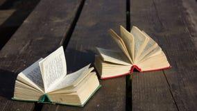 Карманные словари стоковое изображение rf