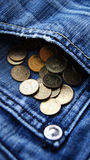 Карманные деньги PLN Стоковое Изображение