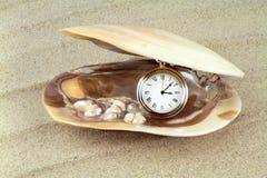 Карманный вахта в раковине моря с реальными жемчугами Стоковое Изображение RF