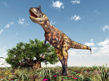 Карнотавр динозавра Стоковые Изображения