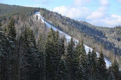 Карпаты в зиме Стоковые Фото