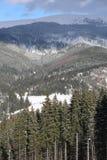 Карпаты в зиме Стоковые Изображения