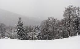 Карпат в зиме Стоковые Изображения