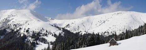 Карпат в зиме Стоковые Фото
