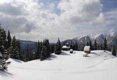 Карпат в зиме Стоковое Изображение RF