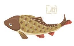 Карп, иллюстрация шаржа вектора Стоковые Изображения RF