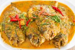 Карри-зажаренные рыбы Chee fishChu стоковые изображения rf