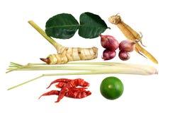 Карри ингридиентов тайское и тайский суп еды, горячих и кислых, пряный суп травы лимона: высушенные чили, трава лимона, красный л стоковые изображения