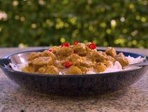 Карри овечки горячего chili индийское в глубокой плите Стоковые Фотографии RF