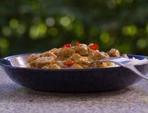 Карри овечки горячего chili индийское в глубокой плите Стоковые Изображения