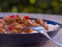 Карри овечки горячего chili индийское в глубокой плите Стоковое Изображение