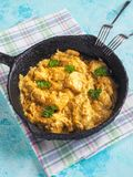 Карри цыпленка масла Makhani Murgh с нежными куриной грудкой, сливк, маслом и медом Стоковые Изображения