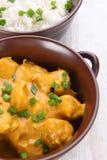 Карри цыпленка масла с basmati рисом. Стоковое фото RF