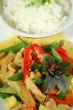 карри 2 цыпленк сметанообразное тайское Стоковое Изображение RF