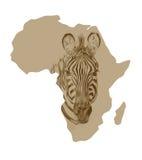 Карта Африки с вычерченной зеброй Стоковая Фотография RF