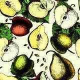 Картина ¡ Ð olorful с яблоками и грушами Рука Бесплатная Иллюстрация