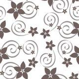 Картина абстрактного вектора безшовная с свирлями и цветками Стоковое Фото