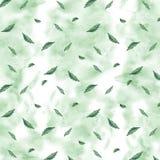 Картина акварели безшовная ботаническая Листья, предпосылка трав Картина руки текстура зеленого цвета травы Стоковые Фото