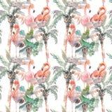 Картина акварели безшовная ладони с фламинго на белой предпосылке, руке нарисованная иллюстрация для вашего дизайна для Стоковые Изображения
