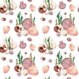 Картина акварели безшовная раковин моря Стоковая Фотография