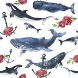 Картина акварели безшовная с китами и анкером, цветком пиона Стоковое Изображение