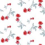 Картина акварели безшовная с красными розами и серым цветом выходит на белую предпосылку Стоковая Фотография