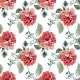 Картина акварели безшовная с красочными цветками и листьями на белой предпосылке, цветочном узоре акварели, цветках внутри Стоковые Изображения RF