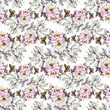 Картина акварели безшовная с красочными цветками и листьями на белой предпосылке, цветочном узоре акварели, цветках внутри Стоковое Изображение