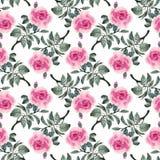 Картина акварели безшовная с красочными цветками и листьями на белой предпосылке, цветочном узоре акварели, цветках внутри Стоковая Фотография RF
