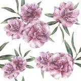 Картина акварели безшовная с олеандром Вручите покрашенные цветки олеандра при листья и ветвь изолированные на белизне Стоковые Фотографии RF