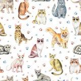 Картина акварели безшовная с 10 различными породами котов иллюстрация вектора