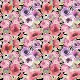Картина акварели безшовная с цветками, ветреницами, маками, розами и бабочками Романтичные ботанические обои бесплатная иллюстрация