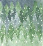 Картина акварели ели или соснового леса иллюстрация вектора