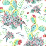 Картина акварели естественная безшовная с кактусом иллюстрация штока