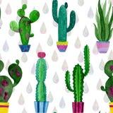Картина акварели кактусов и цветков succulents иллюстрация вектора